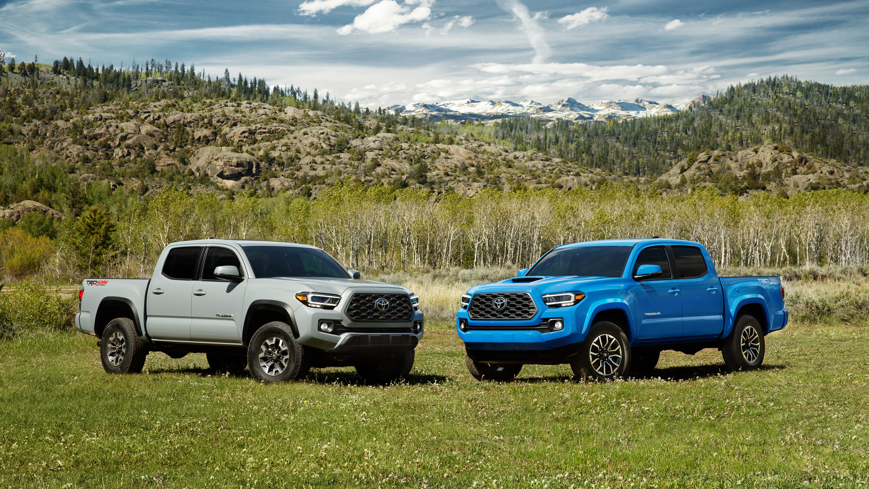 2020 Toyota Tacoma Front Blue and White Exterior